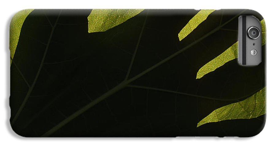 Hand IPhone 6s Plus Case featuring the photograph Hand And Catalpa Veins Backlit by Anna Lisa Yoder