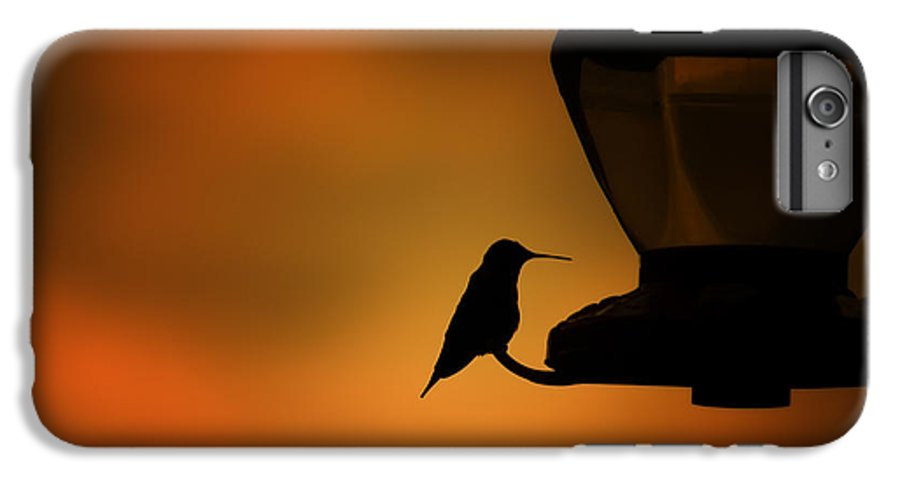 Hummingbird IPhone 6s Plus Case featuring the photograph Hummingbird After The Storm by Al Mueller