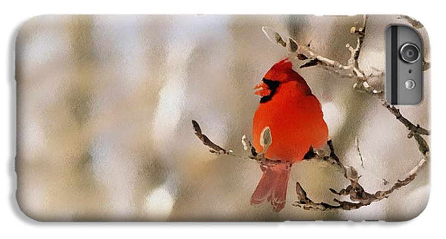 Cardinal IPhone 6s Plus Case featuring the photograph In Red by Gaby Swanson