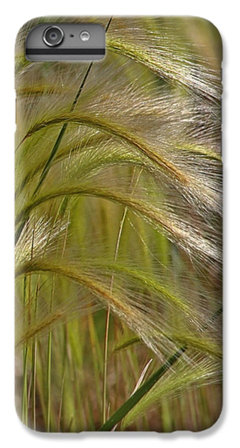 Grass IPhone 6s Plus Case featuring the photograph Indiangrass Swaying Softly With The Wind by Christine Till