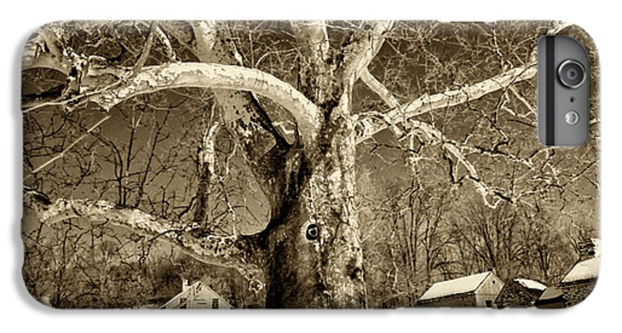 Sycamore Tree IPhone 6s Plus Case featuring the photograph Lafayette Headquarters by Jack Paolini