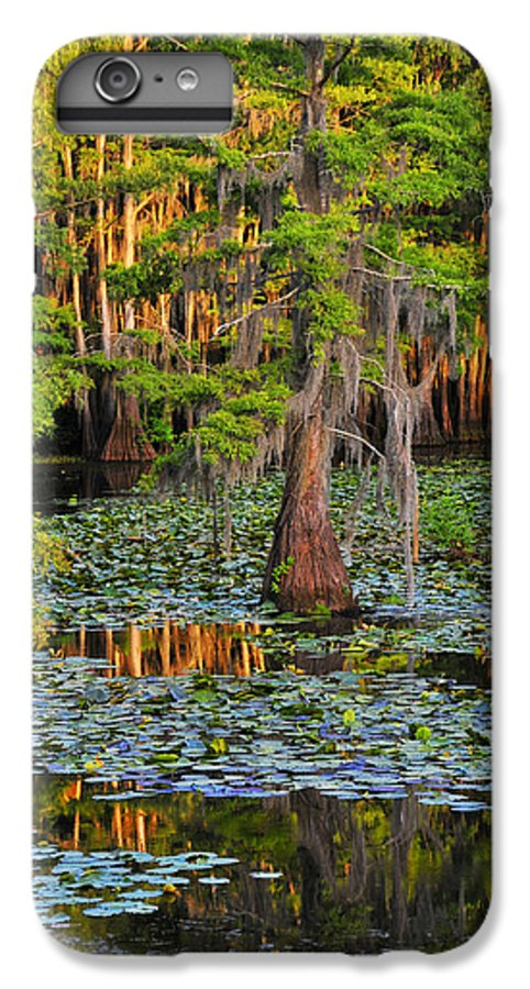 Bog IPhone 6s Plus Case featuring the photograph Naked by Skip Hunt