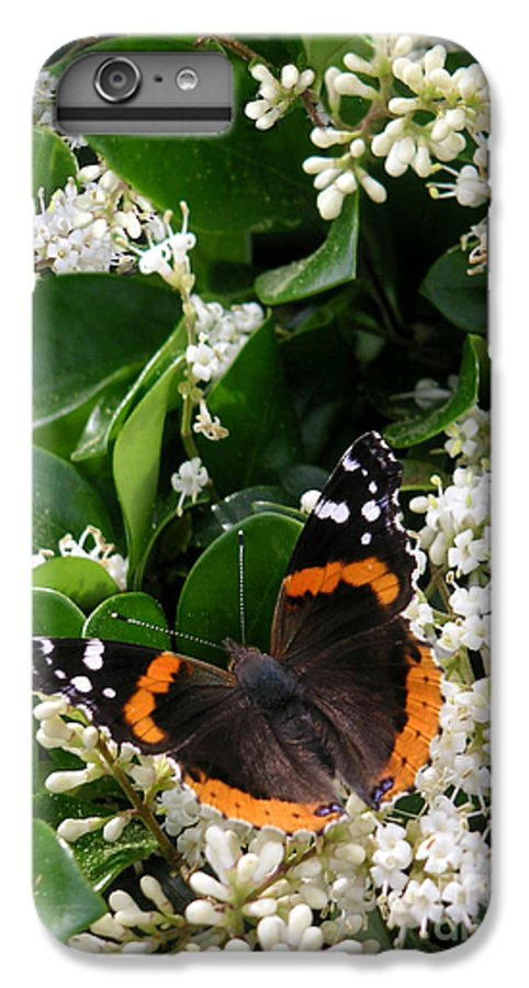 Nature IPhone 6s Plus Case featuring the photograph Nature In The Wild - A Sweet Stop by Lucyna A M Green
