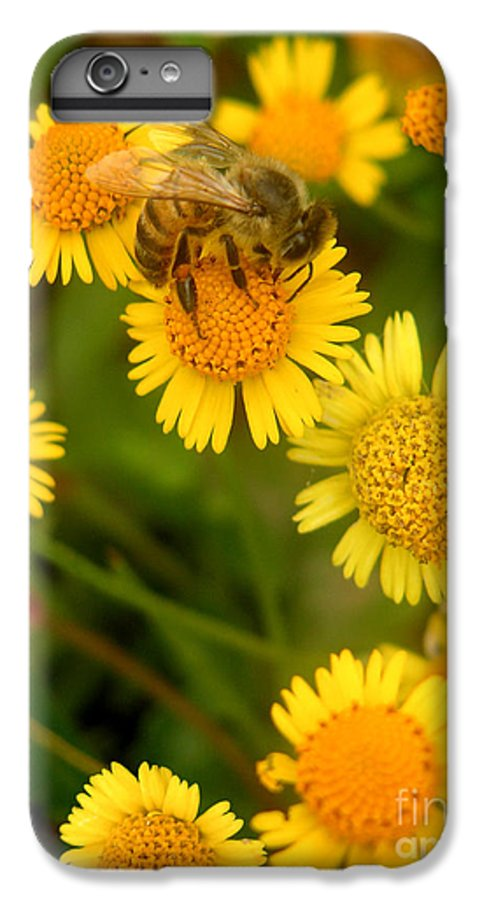 Nature IPhone 6s Plus Case featuring the photograph Nature In The Wild - The Nectar Company by Lucyna A M Green