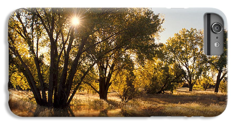 Ftrees IPhone 6s Plus Case featuring the photograph Oliver Sunbursts by Jerry McElroy
