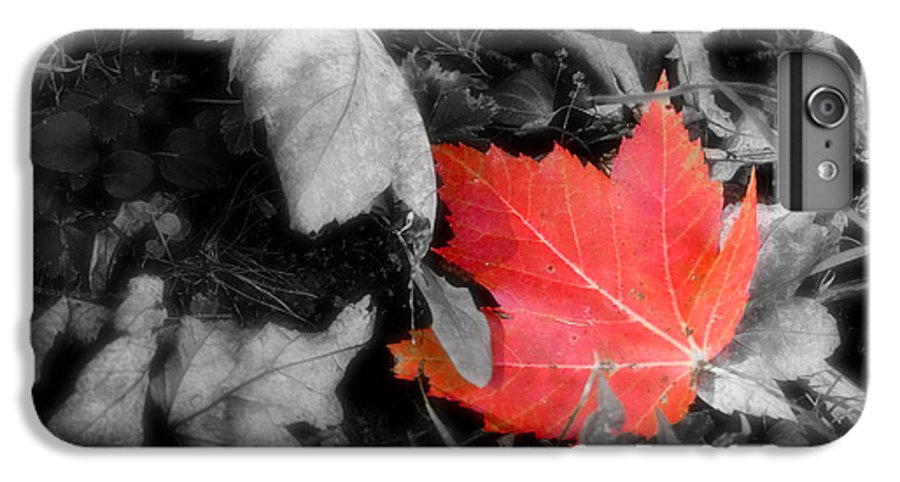 Leaf IPhone 6s Plus Case featuring the photograph One Of A Kind by Kenneth Krolikowski