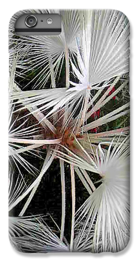 Nature IPhone 6s Plus Case featuring the photograph Palm Wonderful by Lucyna A M Green