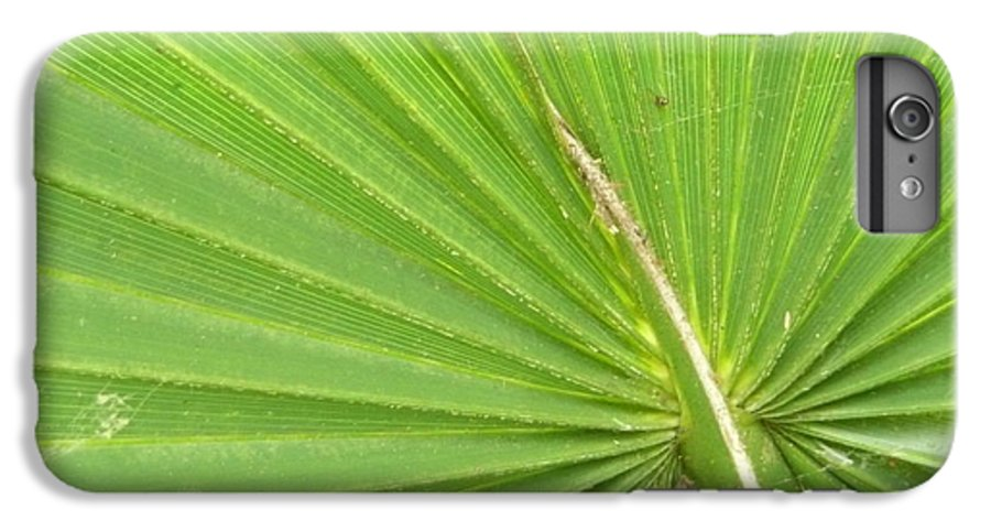 Palmetto IPhone 6s Plus Case featuring the photograph Palmetto II by Kathy Schumann