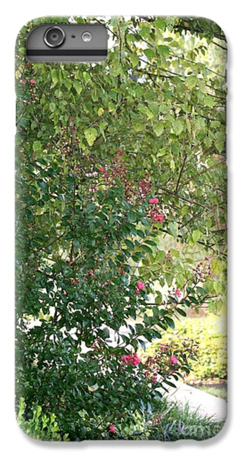 Path IPhone 6s Plus Case featuring the photograph Pink And Green Path by Nadine Rippelmeyer