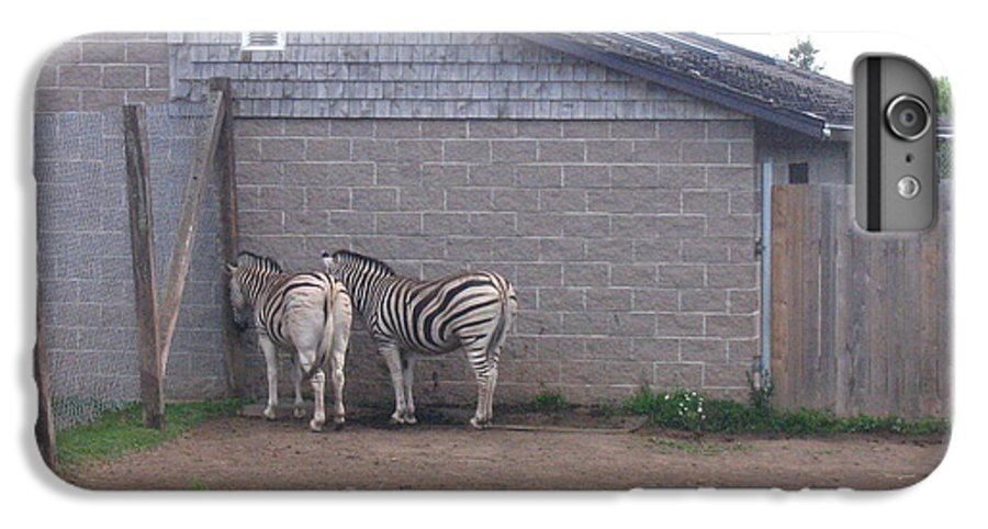 Zebra IPhone 6s Plus Case featuring the photograph Plains Zebras In The Corner by Melissa Parks