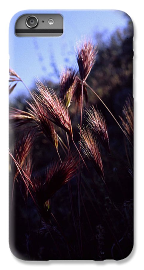 Nature IPhone 6s Plus Case featuring the photograph Red Feathers by Randy Oberg