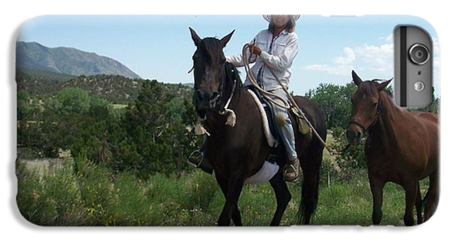 Horses IPhone 6s Plus Case featuring the photograph Roadside Horses by Anita Burgermeister