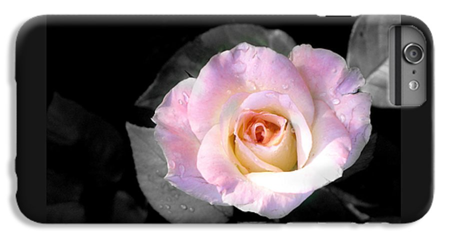 Princess Diana Rose IPhone 6s Plus Case featuring the photograph Rose Emergance by Steve Karol