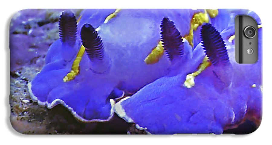 Ocean IPhone 6s Plus Case featuring the photograph Sealife Underwater Snails by Christine Till