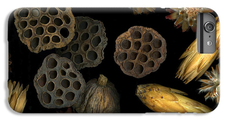 Pods IPhone 6s Plus Case featuring the photograph Seeds And Pods by Christian Slanec