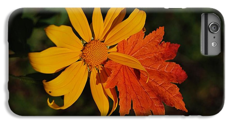 Pop Art IPhone 6s Plus Case featuring the photograph Sun Flower And Leaf by Rob Hans