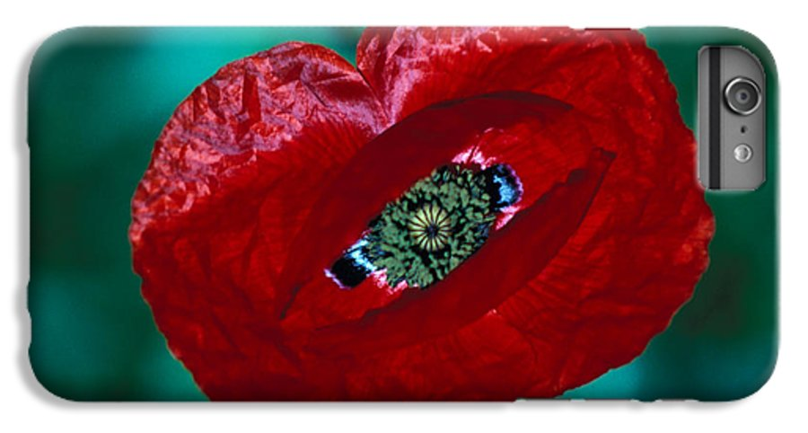 Bright; Red; Green; Brilliant; Flower; Flora; Close-up; Eye; Nature; Opium; Sleep; Death; Hypnotic; Magic; Wizard; Dorothy; France IPhone 6s Plus Case featuring the photograph The Opiate Of Desire by Carl Purcell