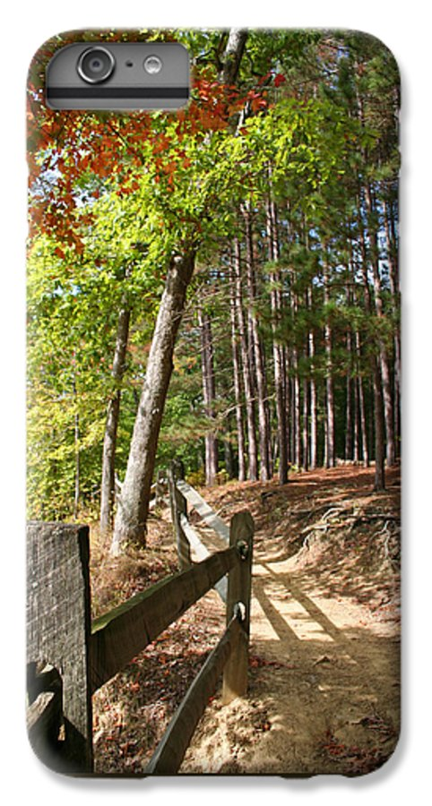 Tree IPhone 6s Plus Case featuring the photograph Tree Trail by Margie Wildblood