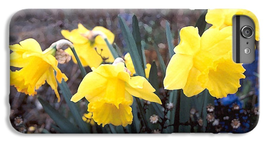 Flowes IPhone 6s Plus Case featuring the photograph Trumpets Of Spring by Steve Karol