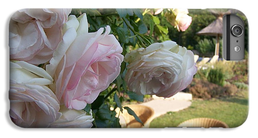 Roses IPhone 6s Plus Case featuring the photograph Villa Roses by Nadine Rippelmeyer