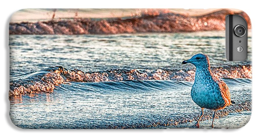 Ocean IPhone 6s Plus Case featuring the photograph Walking On Sunshine by Mathias Janke