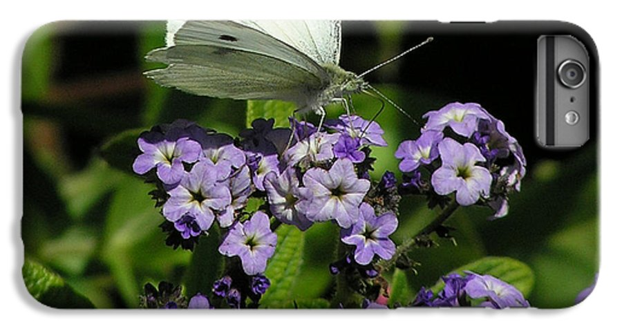 White IPhone 6s Plus Case featuring the photograph White Butterfly by Louise Magno