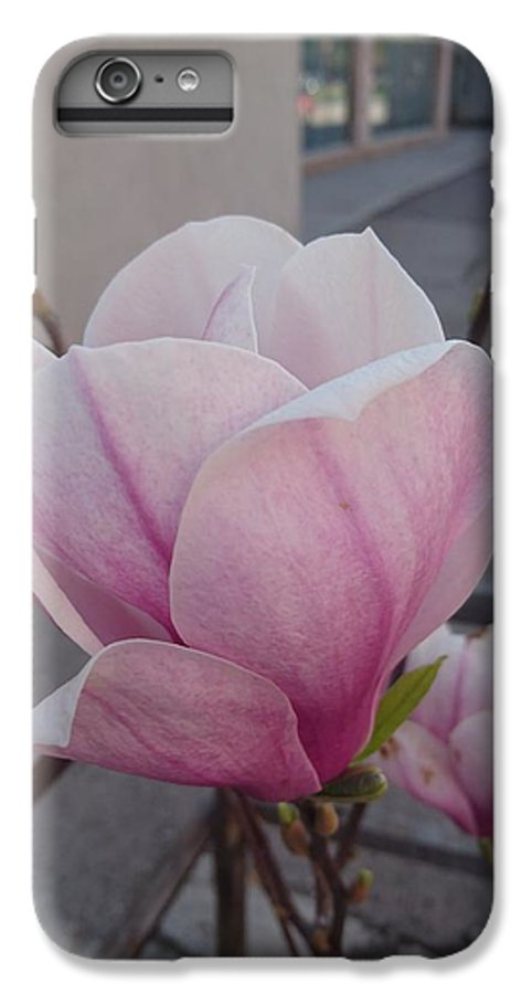 IPhone 6s Plus Case featuring the photograph Magnolia by Anzhelina Georgieva