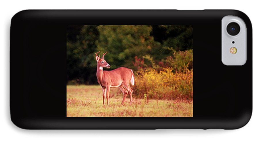 Deer IPhone 7 Case featuring the photograph 070406-58 by Mike Davis