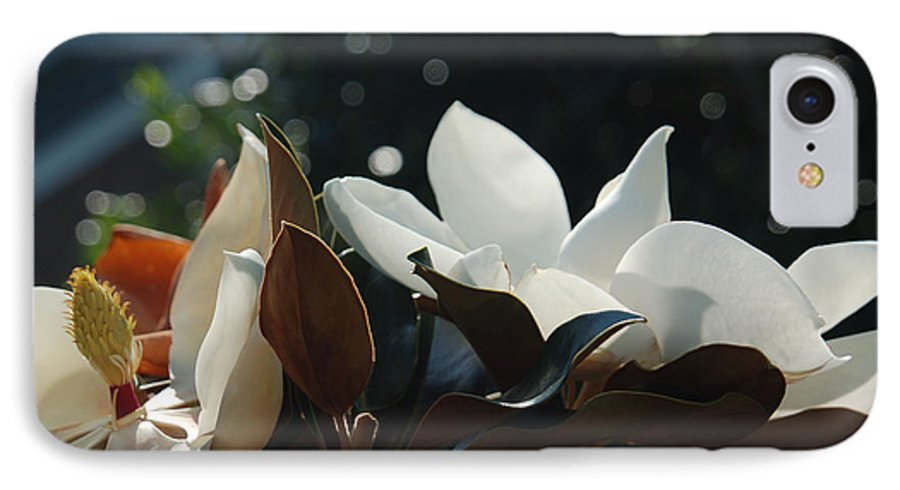 Magnolia IPhone 7 Case featuring the photograph A Sea Of Magnolias by Suzanne Gaff