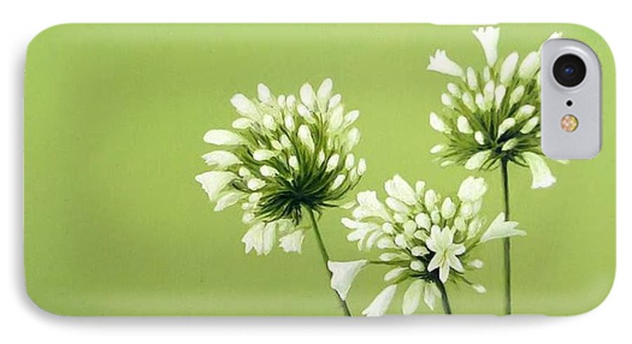 Flower IPhone 7 Case featuring the painting Agapanthus by Trisha Lambi