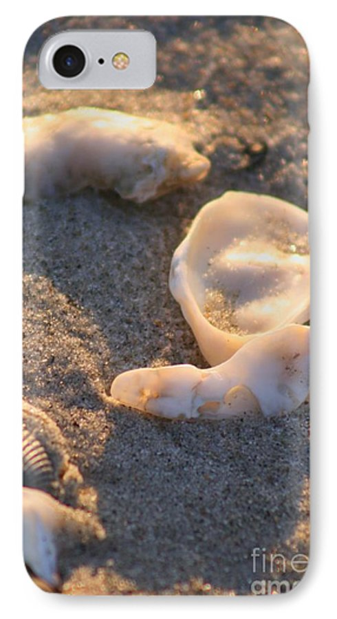 Shells IPhone 7 Case featuring the photograph Bald Head Island Shells by Nadine Rippelmeyer