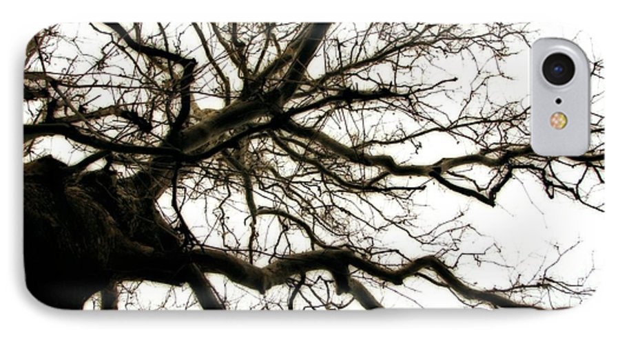 Branches IPhone 7 Case featuring the photograph Branches by Michelle Calkins