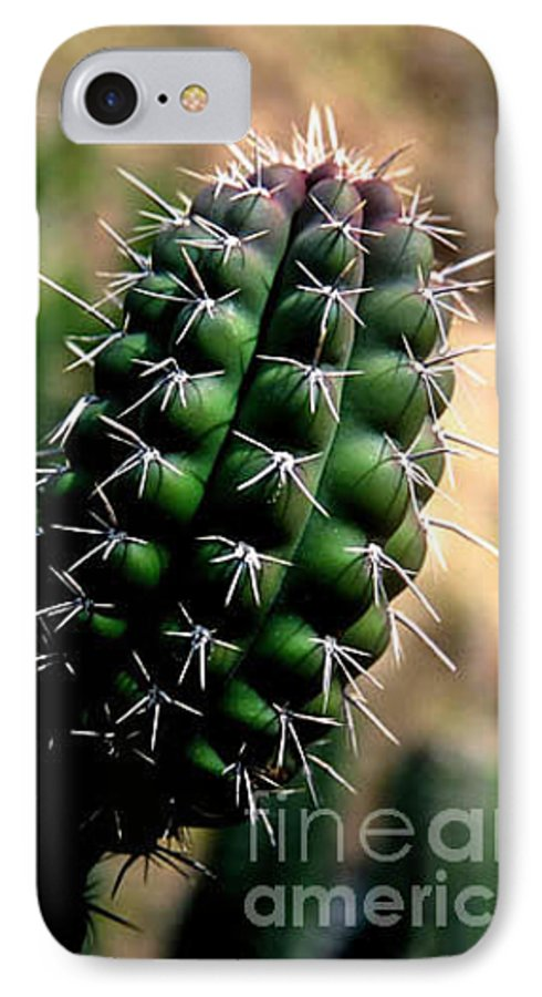 Sahuaro IPhone 7 Case featuring the photograph Cactus Arm by Kathy McClure