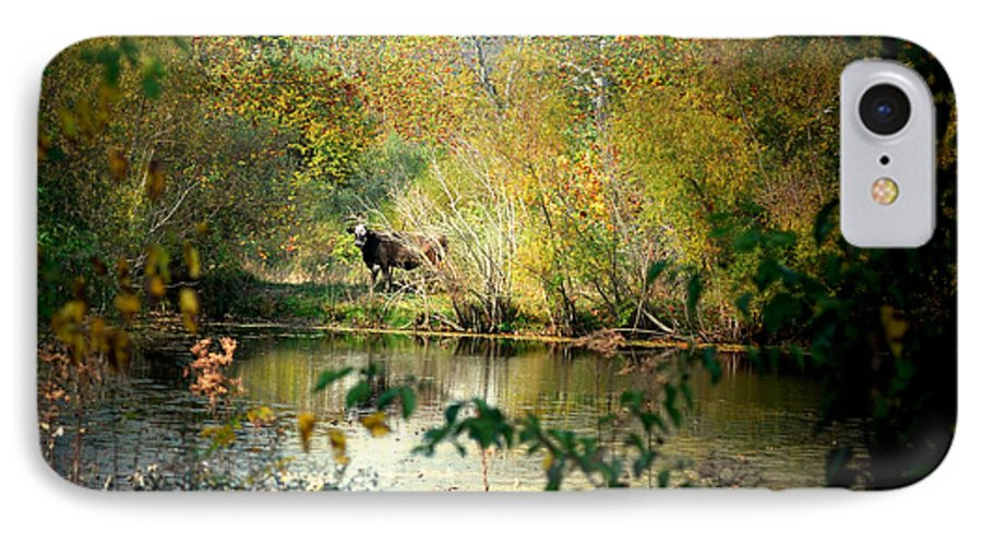 Water IPhone 7 Case featuring the photograph Cow By The Pond by Mark Orr