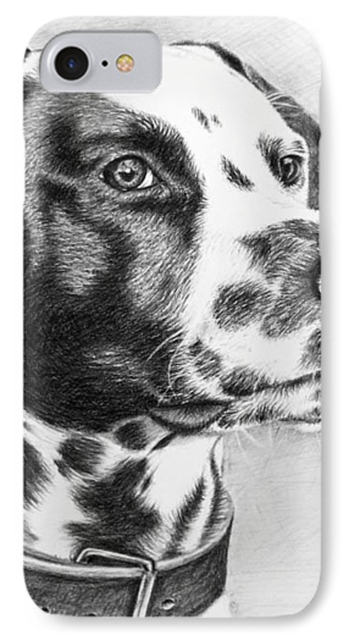 Dog IPhone 7 Case featuring the drawing Dalmatian Portrait by Nicole Zeug