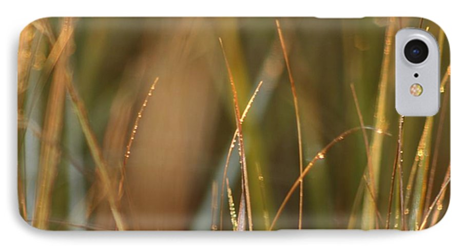 Dew IPhone 7 Case featuring the photograph Dewy Grasses by Nadine Rippelmeyer