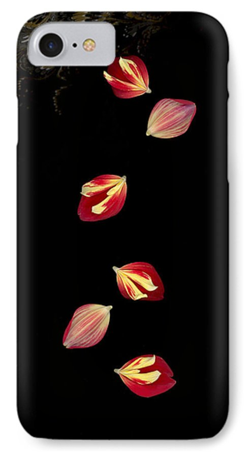 Petal IPhone 7 Case featuring the photograph Falling by Suzanne Gaff