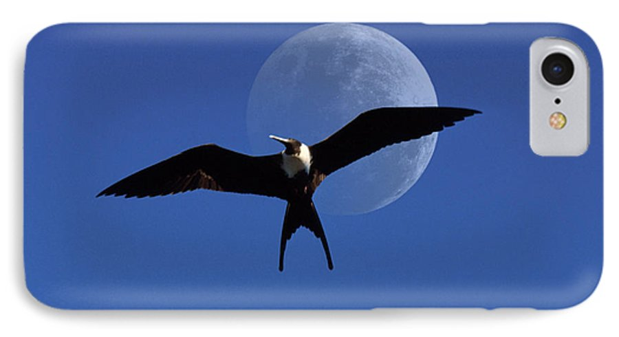 Frigate IPhone 7 Case featuring the photograph Frigatebird Moon by Jerry McElroy