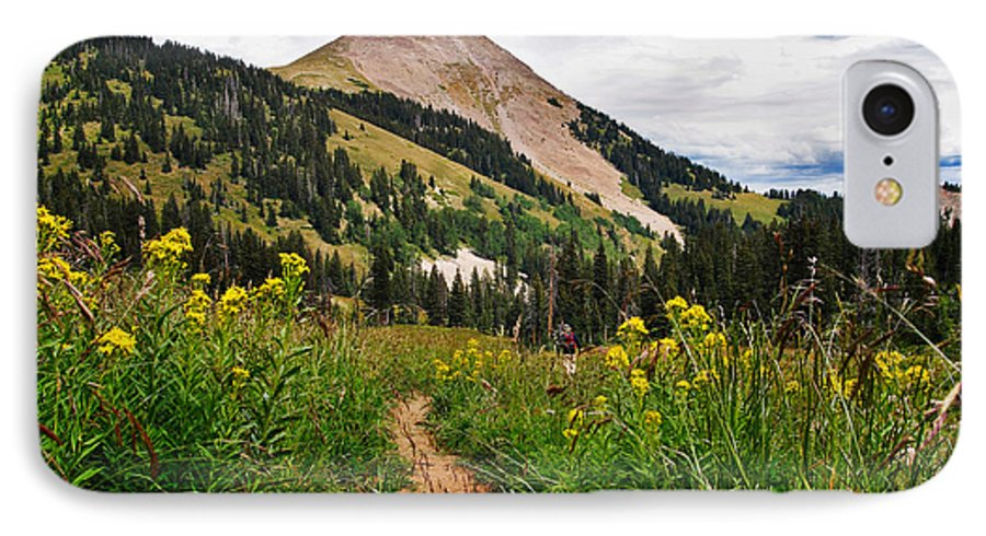 3scape IPhone 7 Case featuring the photograph Hiking In La Sal by Adam Romanowicz