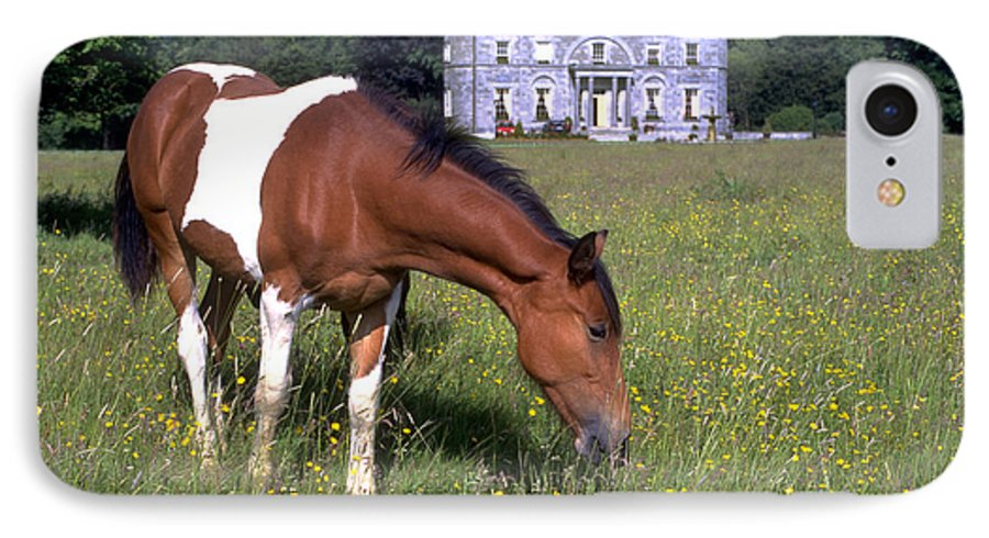 Horse IPhone 7 Case featuring the photograph Horse Grazes Near St. Clerans by Carl Purcell