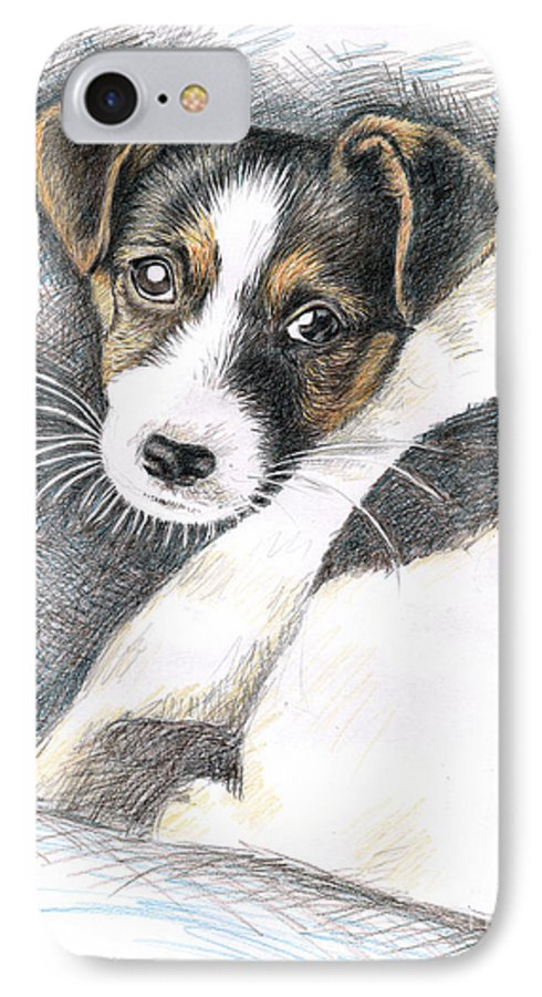 Dog IPhone 7 Case featuring the drawing Jack Russell Puppy by Nicole Zeug