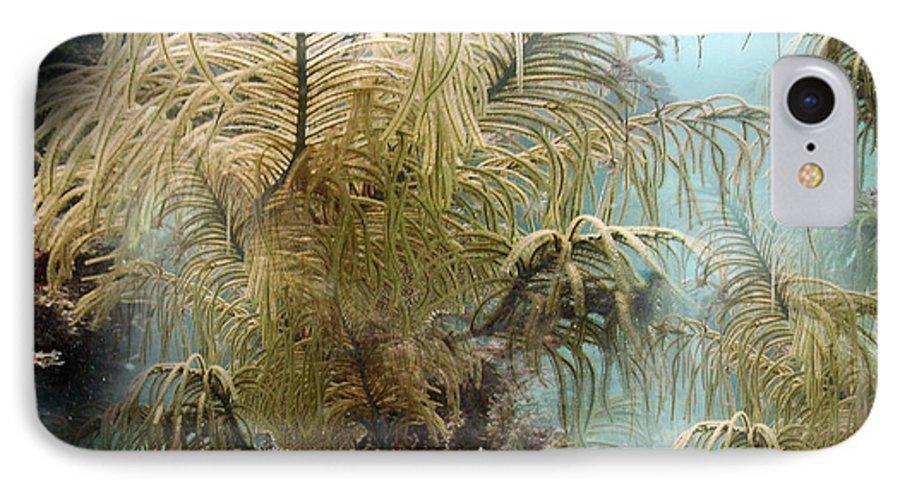 Phil Sadler IPhone 7 Case featuring the digital art Life by Phil Sadler
