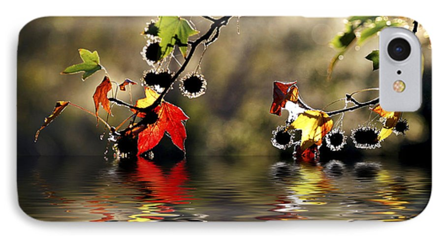 Liquidambar Maple Autumn Fall Flood Water Reflection IPhone 7 Case featuring the photograph Liquidambar In Flood by Sheila Smart Fine Art Photography