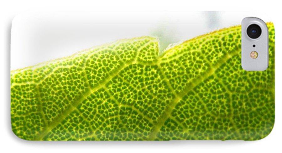 Leaf IPhone 7 Case featuring the photograph Micro Leaf by Rhonda Barrett