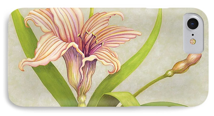 Soft Peach Lily In A Pose IPhone 7 Case featuring the painting Peach Lily by Carol Sabo