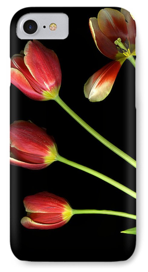 Scanography IPhone 7 Case featuring the photograph Pot Of Tulips by Christian Slanec