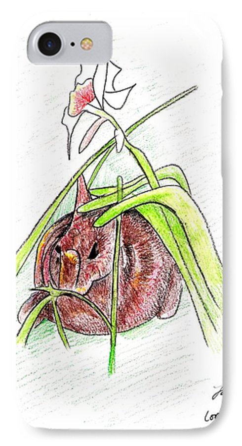 Rabbit IPhone 7 Case featuring the drawing Rabbit by Loretta Nash