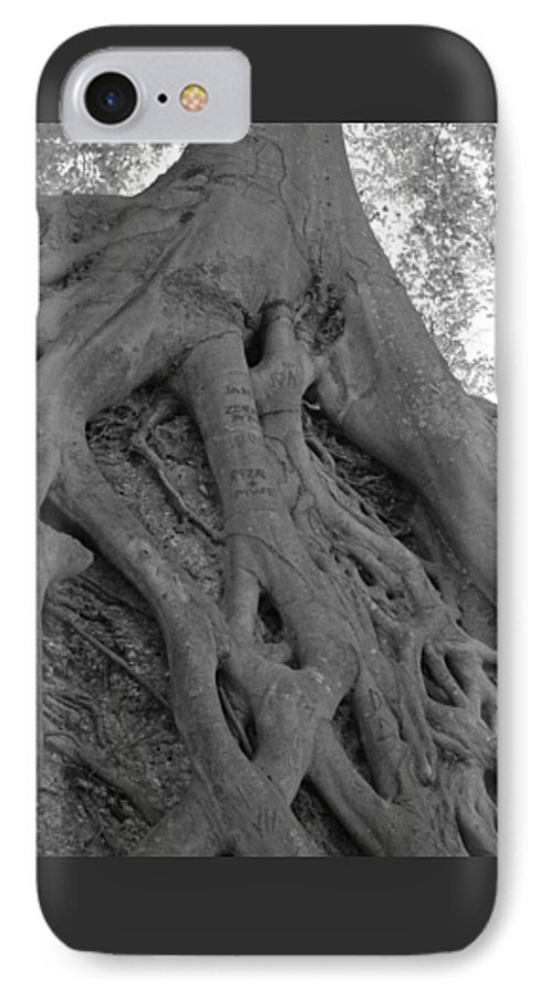 Tree IPhone 7 Case featuring the photograph Roots II by Suzanne Gaff