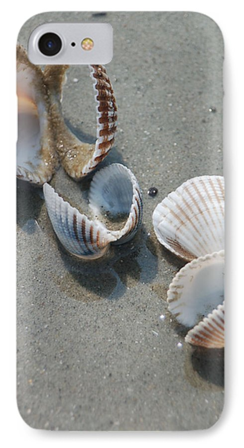 Sea Shell IPhone 7 Case featuring the photograph She Sells Sea Shells by Suzanne Gaff