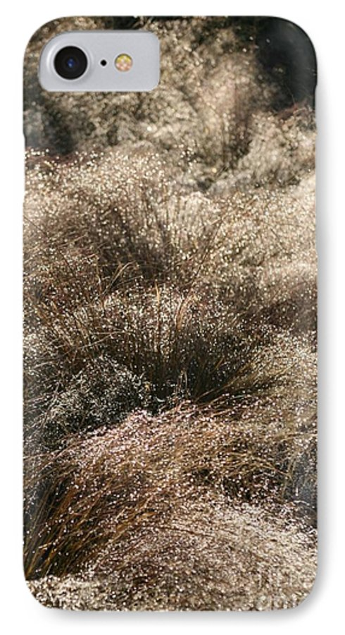 Grasses IPhone 7 Case featuring the photograph Sparkling Grasses by Nadine Rippelmeyer